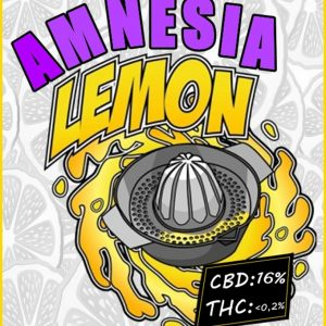 flores cbd amnesia lemon dinahemp